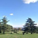 Parchi a Roma